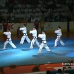 Korean Taekwondo Demonstration in Bulgaria